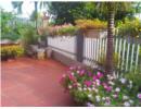 Căn nhà đẹp rực rỡ chỉ với hoa mười giờ nợ rộ